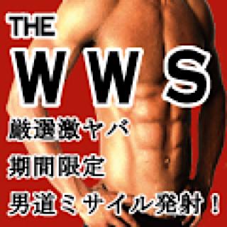 ゲイセックス|WWS|おちんちん